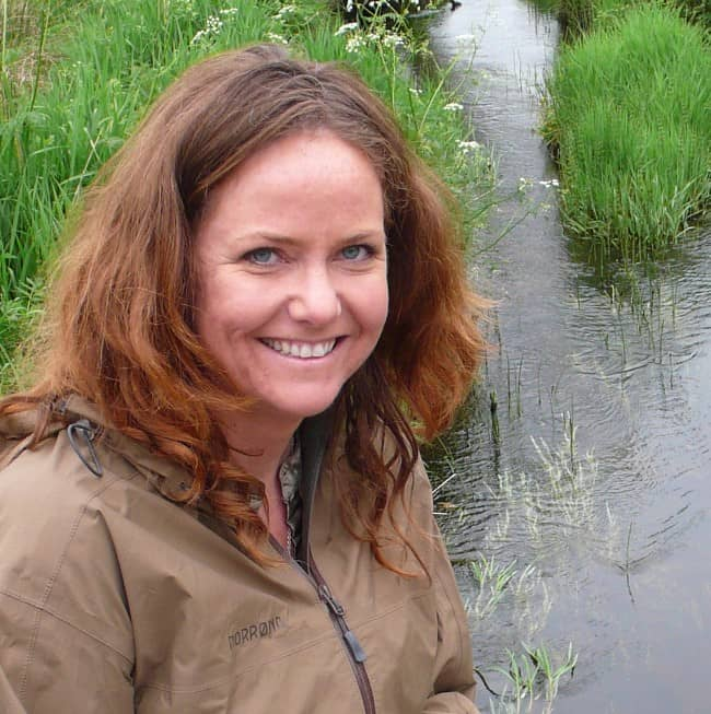 WWF krever miljøtunnel under Vidda