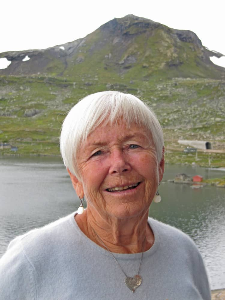 Mitt tunnelsyn: Honoria Bjerknes Hamre